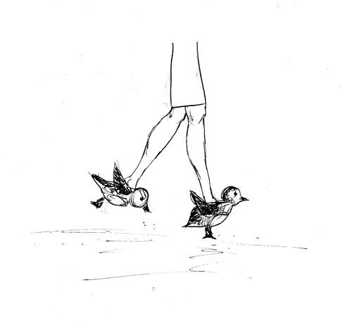 Karl-birdshoes